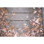 How to Care for and Maintain Decking in Winter?
