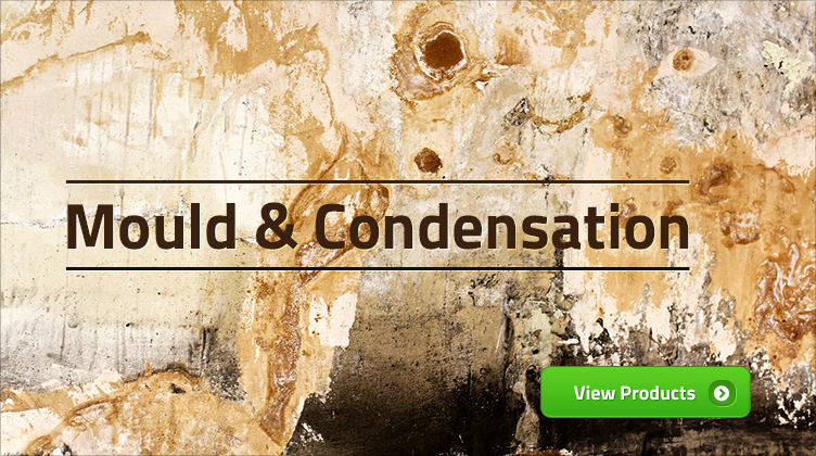 Mould and Condensation
