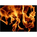 What are Fire Retardants?